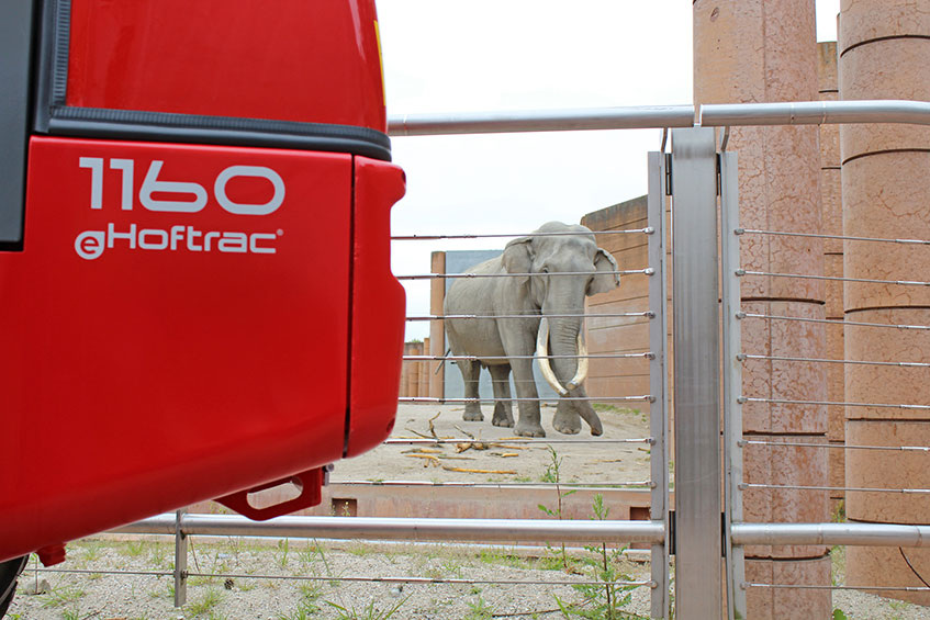 El-drift til elefanterne